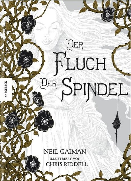 Der Fluch der Spindel Graphic Novel